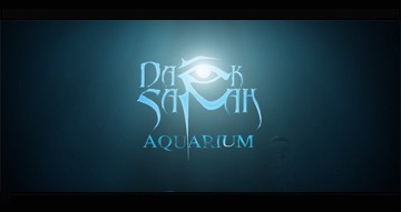 Dark Sarah - Aquarium feat. Charlotte Wessels - OFFICIAL LYRIC VIDEO